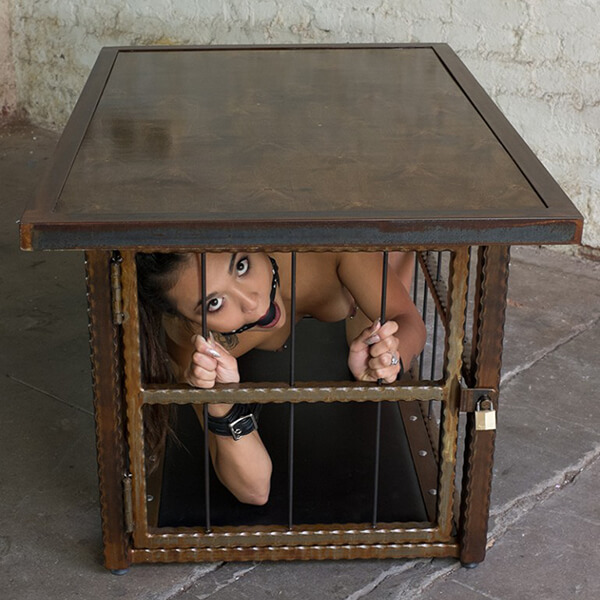 Coffee Table BDSM Cage